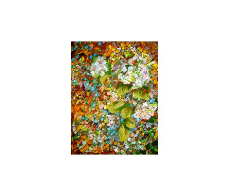Rrhydrangea_garden___3_8x__150_copy_2_shop_preview