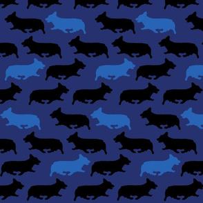 Blue camo Pembrokes