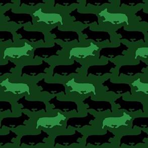 Green camo Pembrokes