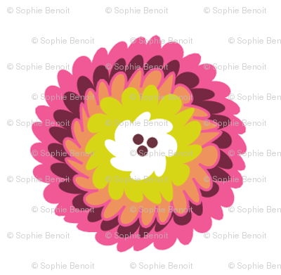Chrysanthemum in Pink