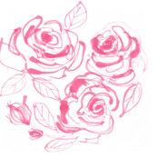 Rrrhoneysuckle_roses_2_shop_thumb