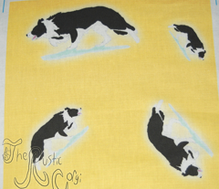 Herding Border Collies - gold