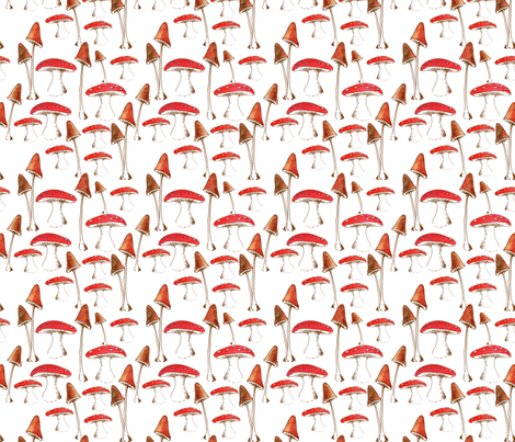 champignons_mignons fabric by nadja_petremand on Spoonflower - custom fabric