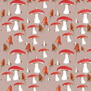 champignons_mignons_fond_beige_M