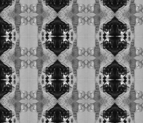 Sassafrass fabric by shamalontee on Spoonflower - custom fabric