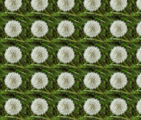 Mini Dandelion  fabric by nezumiworld on Spoonflower - custom fabric