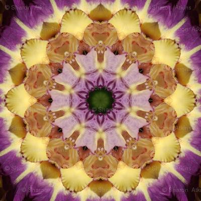Rkaleido_purple_glad_2_preview