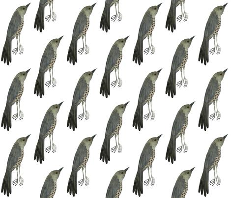 Wood Thrush East fabric by gollybard on Spoonflower - custom fabric