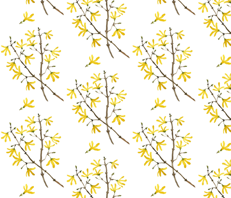 Forsythia fabric by gollybard on Spoonflower - custom fabric