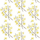 Rrrrrrv2taforsythia_shop_thumb