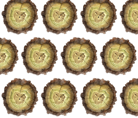 Mossy Logs  fabric by gollybard on Spoonflower - custom fabric
