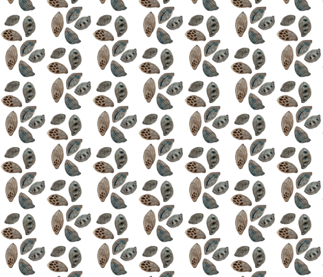 Seed Pods fabric by gollybard on Spoonflower - custom fabric