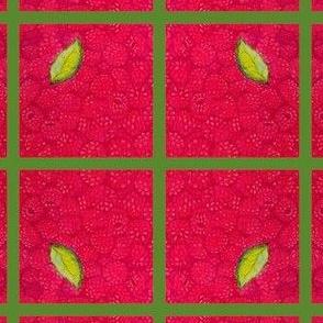Raspberry Sherbert
