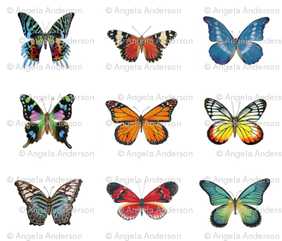 9 Large Butterflies