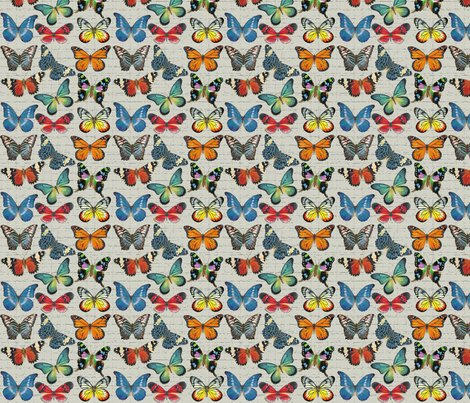 Rrsm_butterflies_on_grey_copy_shop_preview