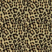 Rrleopardprint_shop_thumb