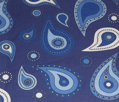 Rrrpaisley_blue_comment_69258_preview