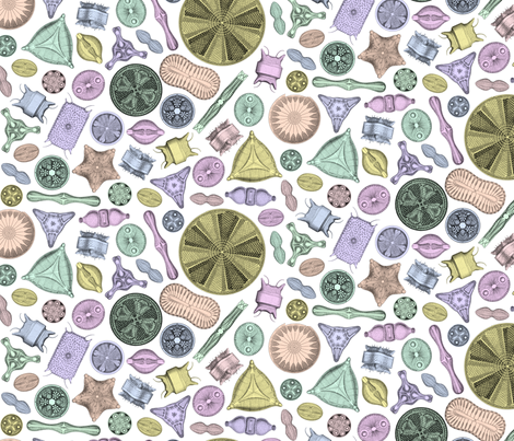 Diatoms on white fabric by jellymania on Spoonflower - custom fabric
