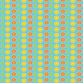citrus slices in rows on blue