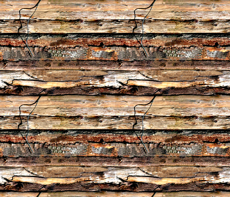 Driftwood fabric by koalalady on Spoonflower - custom fabric