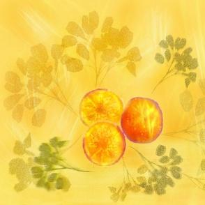 Sunny Day Oranges