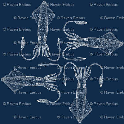 squid fabric