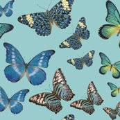 Rrrrrrrblue_butterflies_fabric_copy_shop_thumb