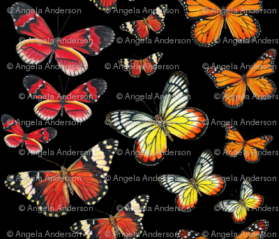 Orange Butterfly Paintings