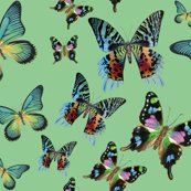 Rrrrgreen_multi_butterfly_fabric_shop_thumb
