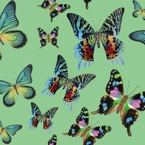 Green Multi Butterfly Paintings