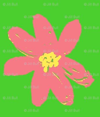 bubblegum daisy ©2012 Jill Bull