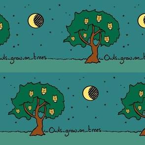 Owls Grow on Trees