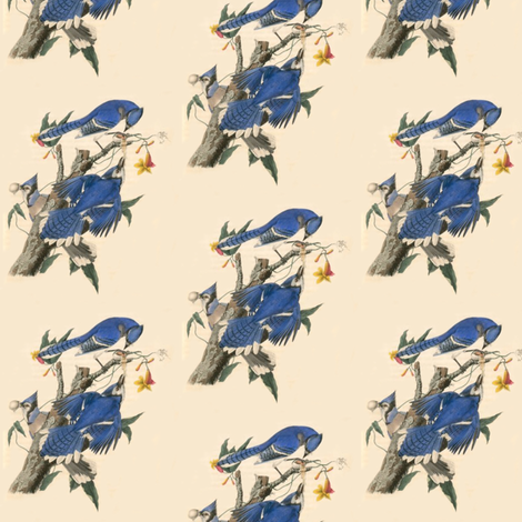 Blue Jays fabric by susaninparis on Spoonflower - custom fabric