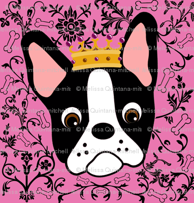 Tiny Pretty Boston Terrier Princess
