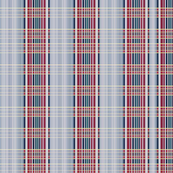 blue_and_red_plaid