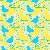 Rrblossombird_shop_thumb