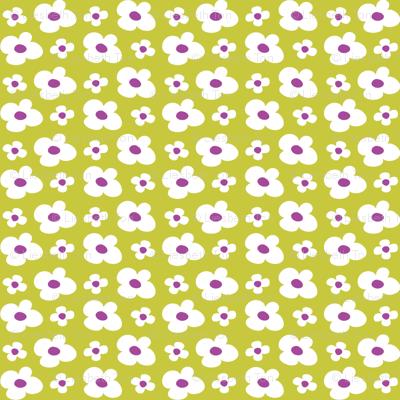 Cache Cache flowers