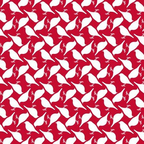 Red Birds (white squares)