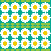 daisy turquoise