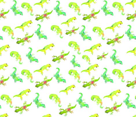Baby Geckoes