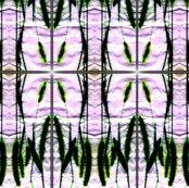 Rrrrfinal_elegant_grasses_ed_ed_ed_ed_shop_thumb