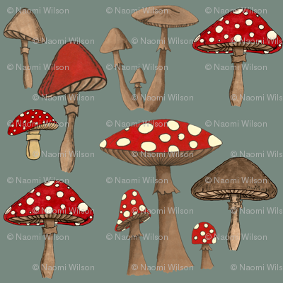 Mushrom Madness- Amanita Muscaria