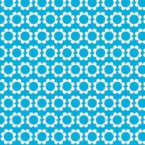 daisysweet blue