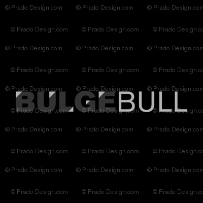 BULGEBULL 3