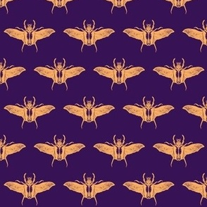 scarabs in flight peach/purple