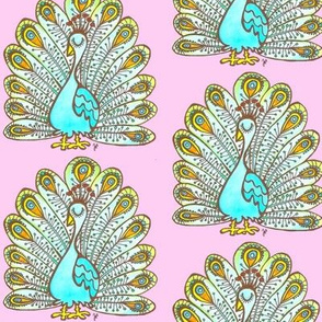 Peacock - pink background