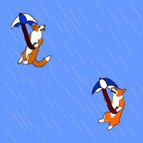 Raining Corgis