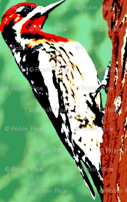 Woodpecker Diamonds