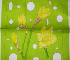 Rrrdaffodils-pattern-sf_comment_110786_preview