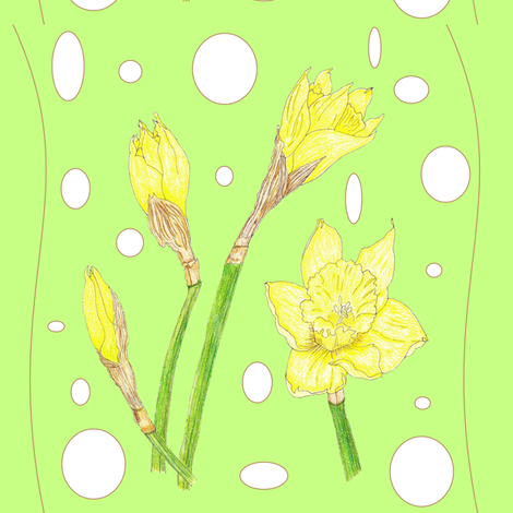 Spring Rain - Daffodils fabric by ccreechstudio on Spoonflower - custom fabric